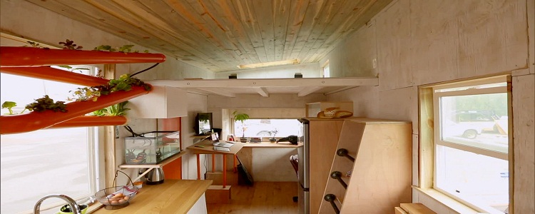 Ecological House